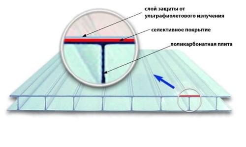 Преимущества и недостатки поликарбоната для теплицы